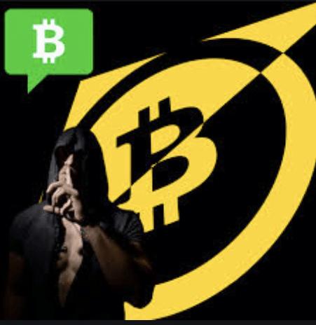 #91 Vin Armani: Crypto Boot Camp