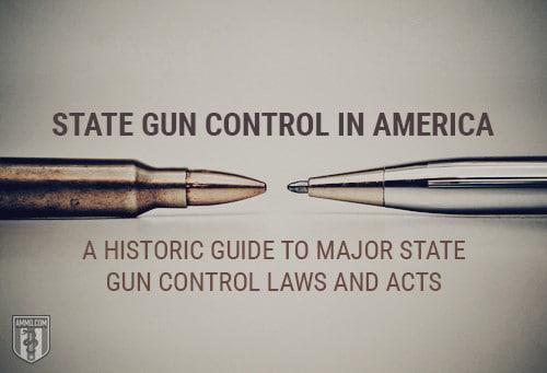 State Gun Control