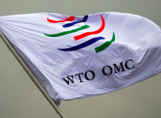 The WTO Is Both Irrelevant and Unnecessary