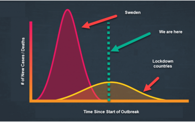 Is Sweden's COVID-19 Response a Cautionary Tale or a Model to Follow? It's Complicated
