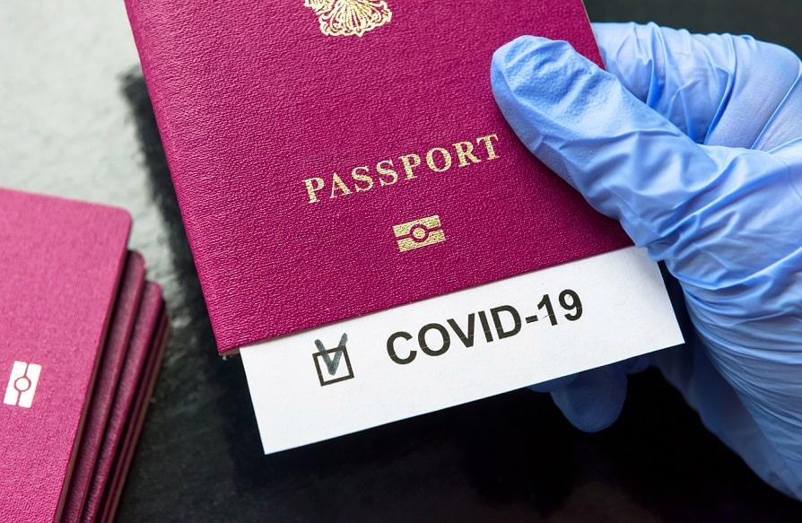 'Private Companies' Will Do The States Bidding – 'Vaccine Passports' Edition