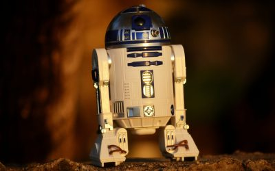 Looking Towards a Productive, Robotic Future